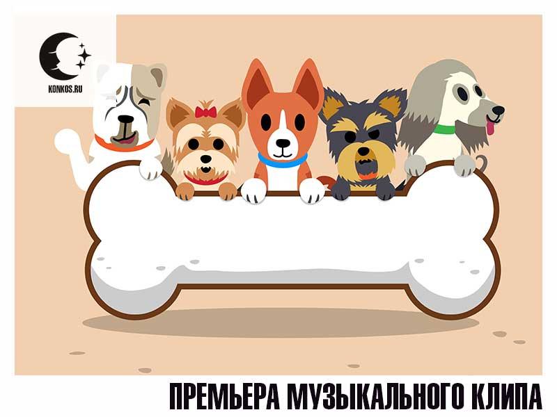Векторное изображение собачек. Статья - Сон #3. Премьера музыкального клипа.